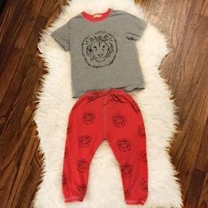 Lion Harem Pant & Shirt Set